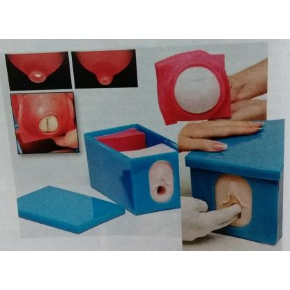 Modelo De Monitoreo Fetal Y...