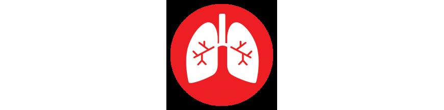 Equipos para evaluar la función cardíaca y pulmonar de un paciente